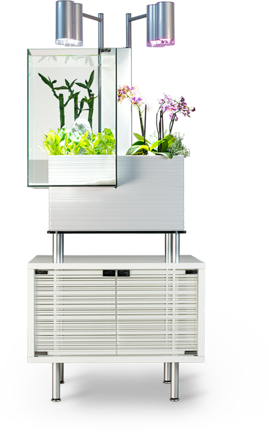 Brio Aquaponics System in white